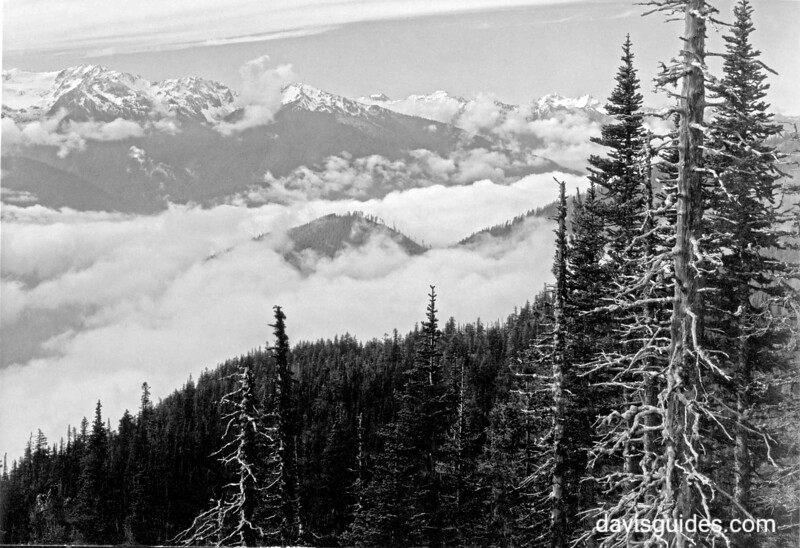 Hurricane Ridge, Olympic National Park, 1938