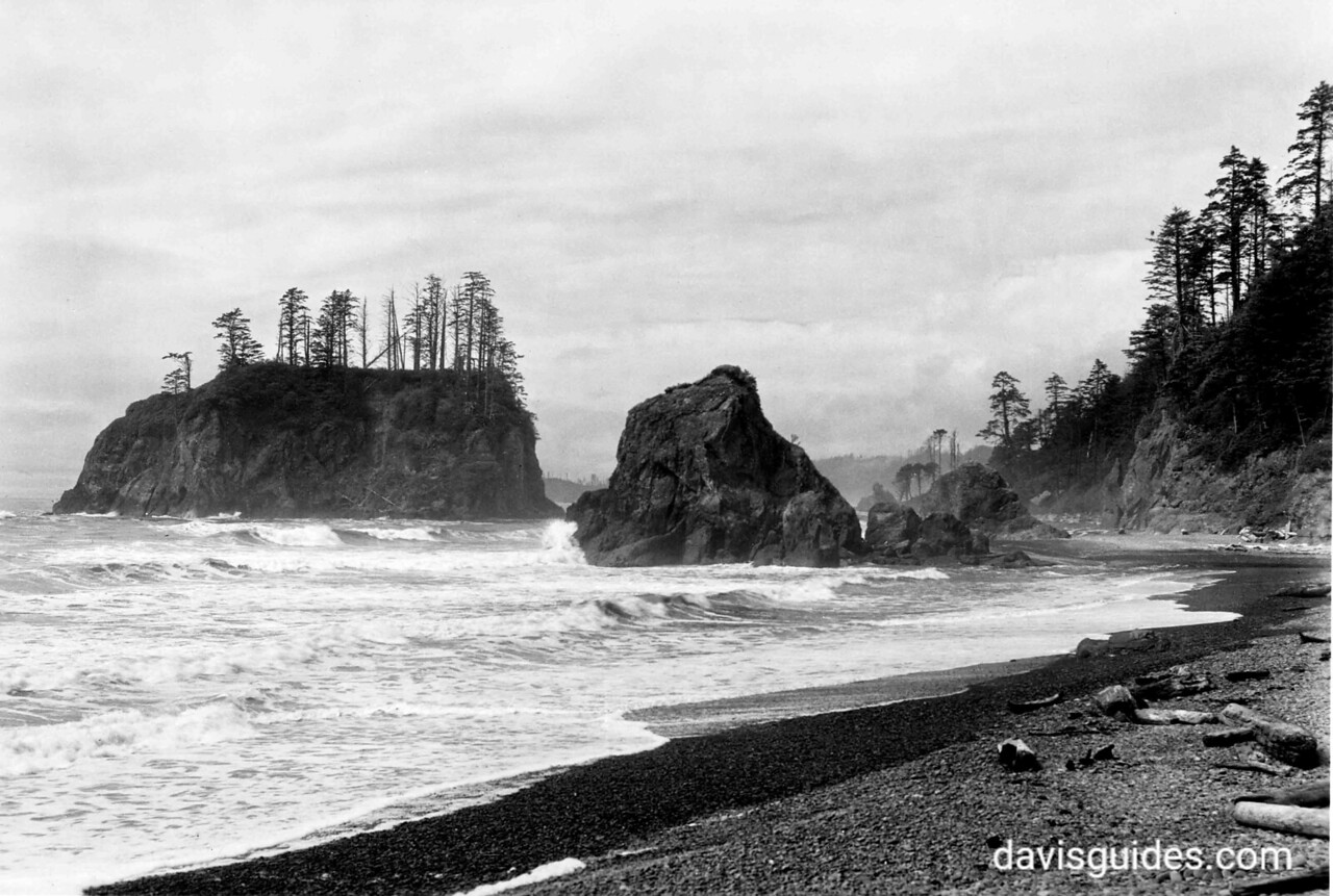 Rocks at Ruby Beach, proposed Olympic National Park, 1936