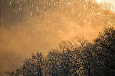 Wind, Sunlight, Fog