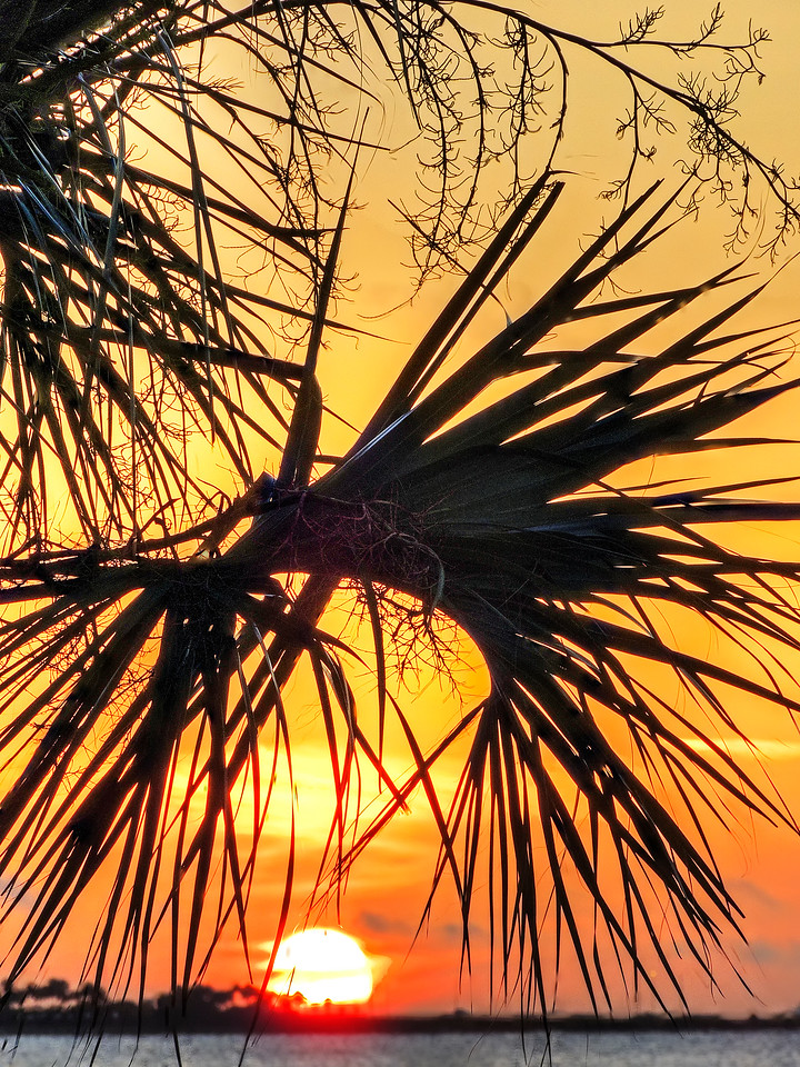 sunrise0109_10_11_tonemapped