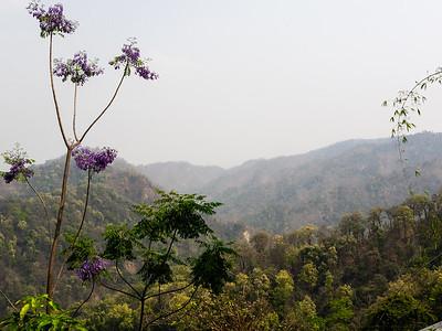 Hazy Valley