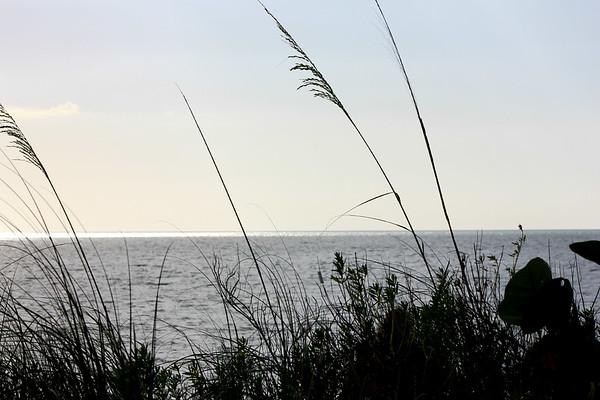 Day At Bonita Springs Beach