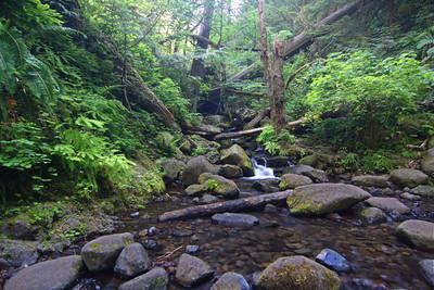 Eagle Creek to High Bridge, Oregon Day Hike