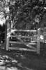 Scotchtown gate
