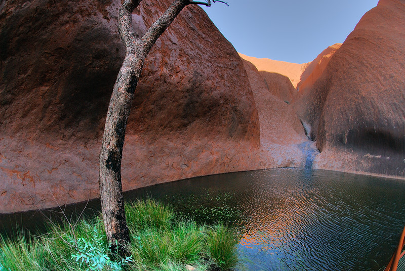 Waterhole on Mala Walk around the base of Ayres Rock