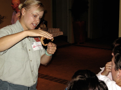 Roar & Snore - Taronga Zoo 28 & 29 March 2008