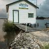 Yamba Bay Oysters