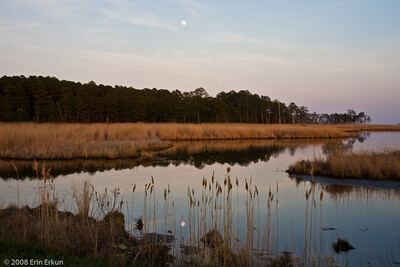Double the moon, double the pleasure - dusk scene at Blackwater NWR.