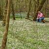 Bull Run Regional Park - April 12: Mui in a field of spring beauties.
