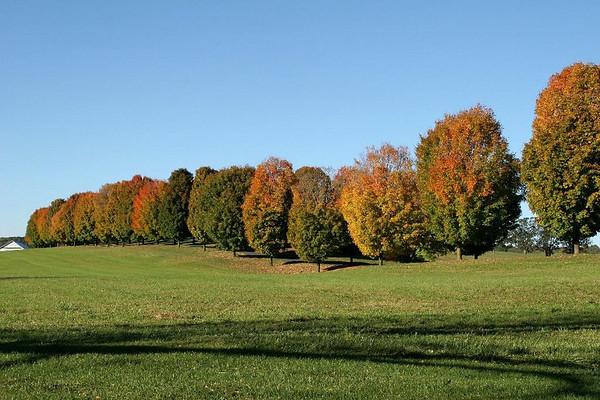 Staunton-Waynesboro (Oct 2006)
