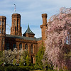 Smithsonian Castle<br /> A glimpse of the Castle through the trees near the Moongate Garden.