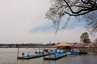 The paddle-boat rental dock at the Tidal Basin.