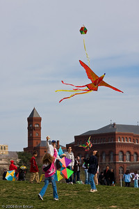 Smithsonian Kite Festival on the Mall.