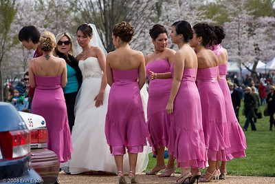 A wedding party in cherry blossom colors.