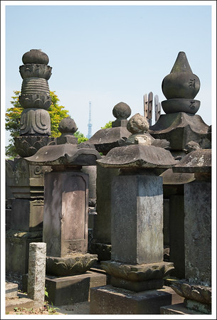 Yanaka Cemetery with Sky Tree in the background