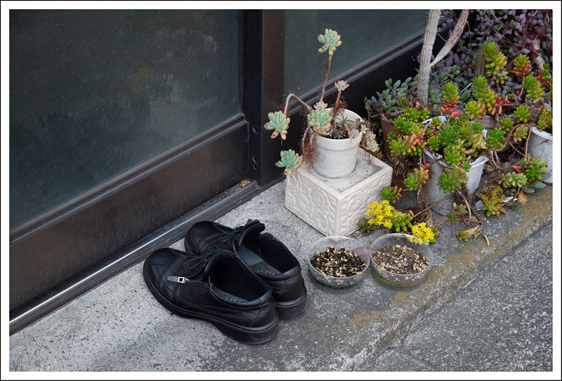 I don't know why these shoes are outside instead of inside, but I thought they were kind of cute.