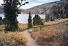 Winnemucca Lake Trail