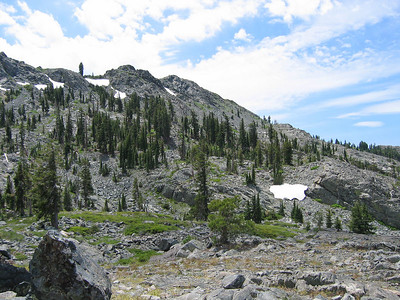 The trees show evidence of deep snow pack and windy conditions