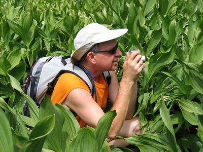 Mike stalks his prey, in the corn lillies ... The hunter becomes the hunted!