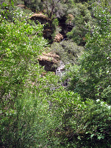 Looking down at American Canyon Creek.