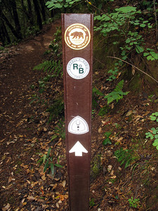 Lots of different organizations have trails around here.