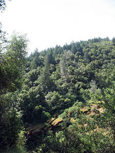 A ridge to the north, on the other side of American Canyon Creek. Our trailhead is back up that way.
