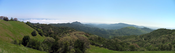 Southeastern panorama. The Brushy Peaks are along the left skyline. Little Bald Mt is the peak near the center. Mt Veeder is the high point on the right horizon.