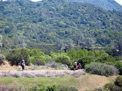 Gray Pines Trail