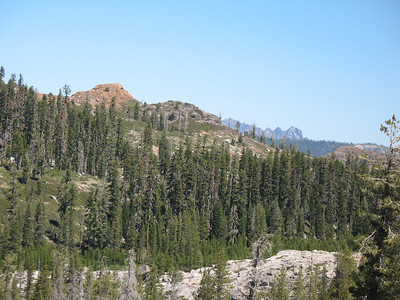 Sierra Buttes in the background.