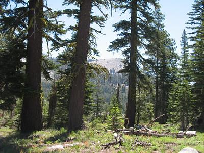 Looking east toward the Crystal Range.