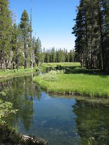 Marshy area where Twin Lakes Creek flows into Wrights Lake.
