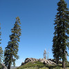 Tall trees. granite outcrops.