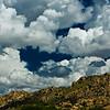 Willcox, AZ