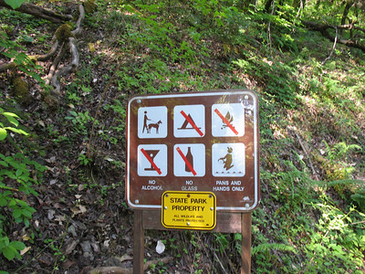 Dogs and gold panning OK, Camping, fires, alcohol, and glass not OK.