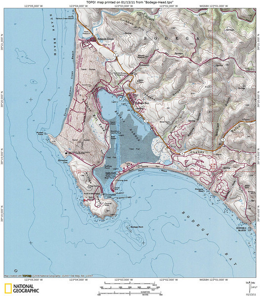 Topo map of Bodega Head. The parking lot where we visited is marked by the red flag at lower left.