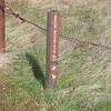 Bald Mountain Trail marker.
