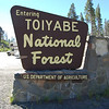 Safely across the road, we enter Toiyabe National Forest.