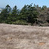 Panorama on Red Hill.