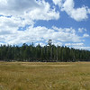 Bonnie and Geno in Big Meadow panorama.