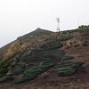 Telecom tower over Sea Lion Cove.