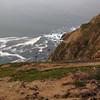 Sea Lion Cove.