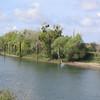 River view, sunken sailboat.