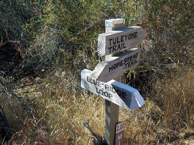 Blue Ridge - Cold Canyon Return 2016