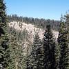 Eroded hillside near Mormon Emigrant Trail.