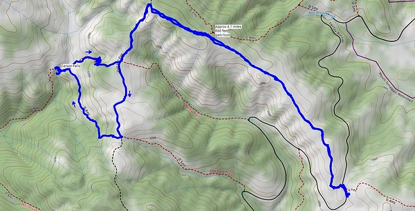Our route for today. An out-and-back hike from Bolinas-Fairfax Road to Carson Falls. We hiked about 4.1 miles, with about 860 feet gain/loss. Some in our group hiked a bit further, exploring the base area of Carson Falls.