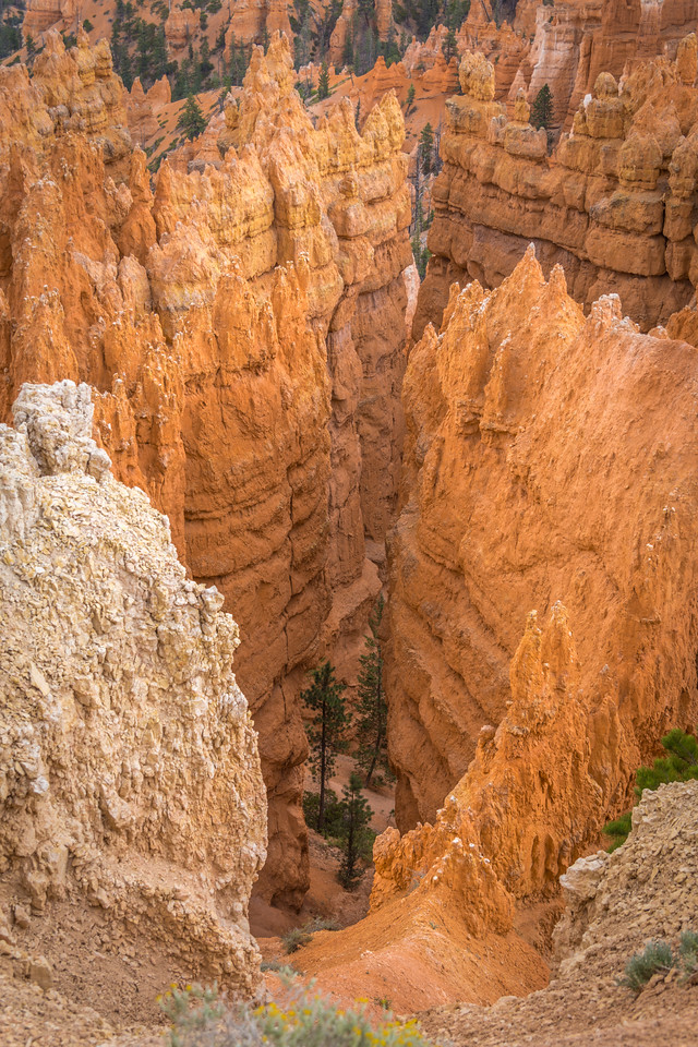 Bryce Canyon Natiional Park