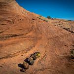 Cottonwood Trail