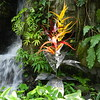 Climatron... glass and metal