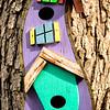 Neva K Scheve=Birdhouse-Dalton