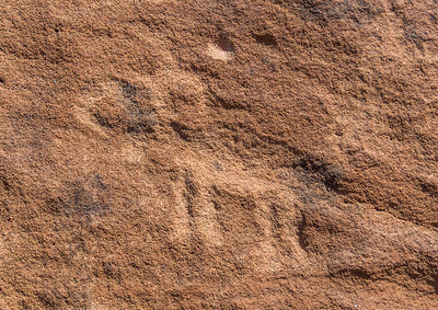 Petroglyphs near Ft Pearce